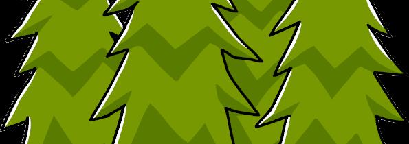 Pour une forêt en bonne santé, parfois, il faut couper !